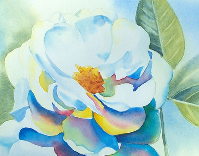 Painting a white rose flower in watercolor