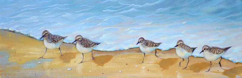 sandpiper birds oil painting