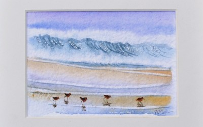 Sandpiper Birds Watercolor Painting