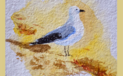 Painting Seagulls On Beach