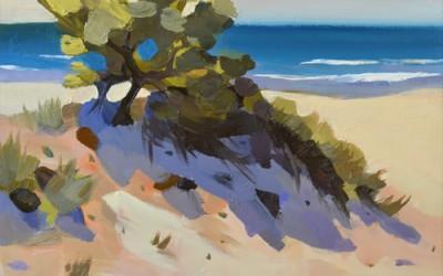Ocean View Sand Dune