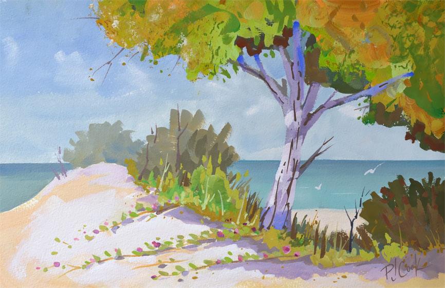 Coastal Colors Seascape Painting P J Cook Artist Studio