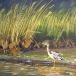 Great Blue Heron at Salt Marsh