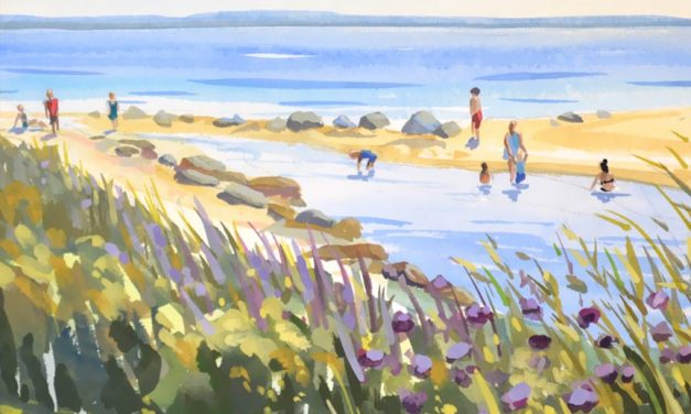 Harkness Park Beach