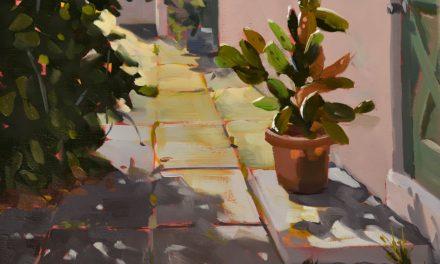 Morning Cactus Spotlight